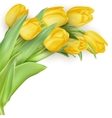 Mother s Day flowers EPS 10 vector image vector image
