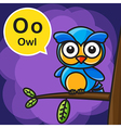 O Owl color cartoon and alphabet for children to vector image vector image