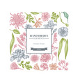 square floral design with pastel japanese vector image