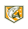 Trout Jumping Retro Shield vector image vector image