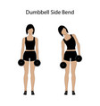dumbbell side bend exercise vector image vector image