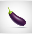 eggplant vegetable icon isolated on white vector image
