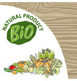 natural product bio ingredients pumpkin and pepper vector image vector image