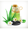 Aloe health and care icon vector image