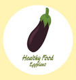 eggplant healthy food concept vector image