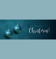 blue christmas luxury bauble ornament banner vector image vector image