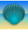 blue shell on the summer sea beach vector image vector image