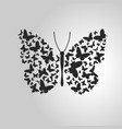 butterfly out of lots of small butterflies vector image vector image
