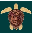 Caretta-caretta turtle with high details vector image