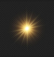 sun light flash with lens flare effect template vector image vector image