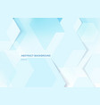 abstract white geometric hexagons and shadow on vector image vector image