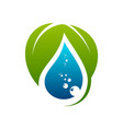 green leaf and water drop logo template vector image vector image