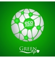 Planet with green eco net and icon vector image
