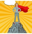Pop Art Business Woman on the Mountain Peak vector image vector image