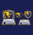 puma mascot log design vector image