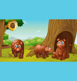 scene with three bears in park vector image vector image