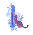 tiger stretching hic body yawning and sharpening vector image vector image