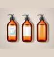 eucalypti glassware bottle or spray vector image vector image