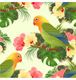 seamless texture parrot lovebird agapornis vector image vector image