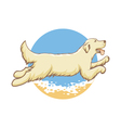 dog sea vector image vector image