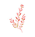flat abstract autumn plant icon vector image vector image