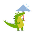 funny cartoon crocodile character walking with vector image