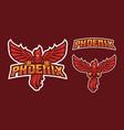 phoenix mascot logo design vector image vector image