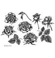 set hand drawn black and white roses vector image