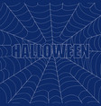 the inscription of halloween on a cobweb vector image