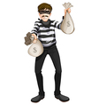A cash robbery vector image vector image