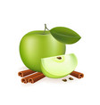 apple and cinnamon on white background vector image