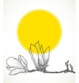 Card with hand drawn magnolia on yellow circle vector image vector image