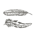 Feathers Set Hand Draw Sketch Trendy Tattoo vector image vector image