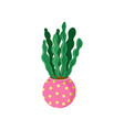 spurge cactus home plant in a flowerpot cartoon vector image vector image