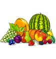 fruits group cartoon vector image