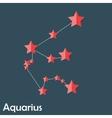 Aquarius Zodiac Sign of the Beautiful Bright Stars vector image vector image