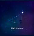 capricornus sign stars map zodiac vector image