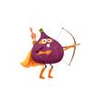 fruit superhero cartoon fig as super hero warrior vector image