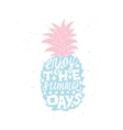 Motivational travel poster with pineapple vector image vector image