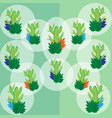 a set of green cactus in the white transparent vector image