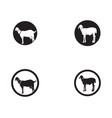 goat black animals logo and symbols template vector image vector image