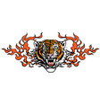 head angry tiger in tongues flame vector image vector image