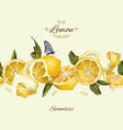 lemon seamless border vector image vector image