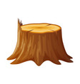 tree wooden stump with rings and roots vector image
