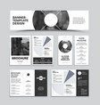 banner brochure trifold dl flyer with headline vector image vector image