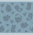 cute cartoon cat seamless pattern on blue vector image vector image