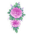 hand drawn floral bunch with pink roses vector image vector image