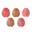 healthy smart creative brain brainstorming vector image vector image