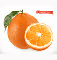 orange fresh fruit 3d realistic icon vector image vector image