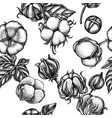 seamless pattern with black and white cotton vector image vector image